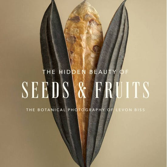 Book Of The Hidden Beauty Of Seeds And Fruits