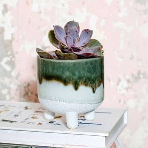 Dip Glazed Green Ombre Planter