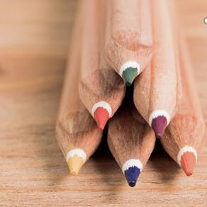 Eight Childrens Sprout Seed Colouring Pencils