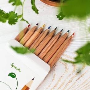 Pack Of Eight Mixed Sprouting Seed Pencils
