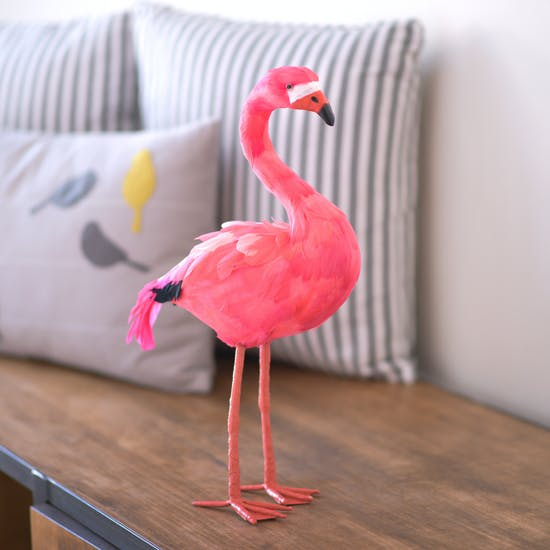 Flora The Pink Feather Flamingo