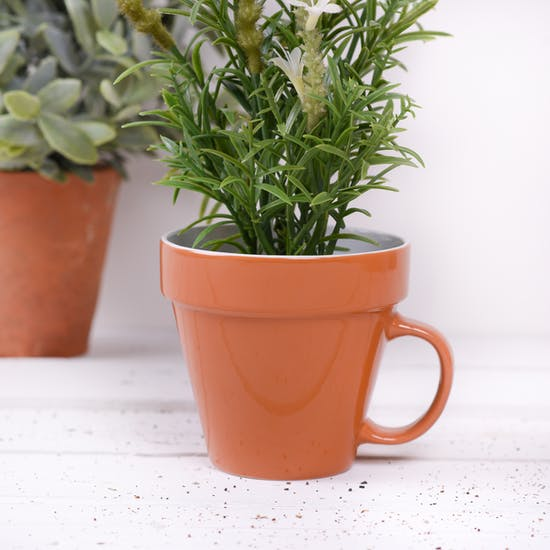 This Plant Pot Mug makes a great gift for gardeners.