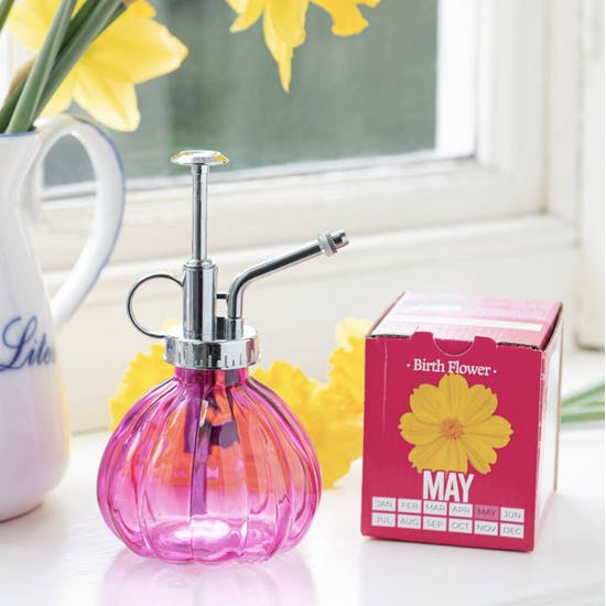 Grow Your Own Birth Flower With Glass Mister