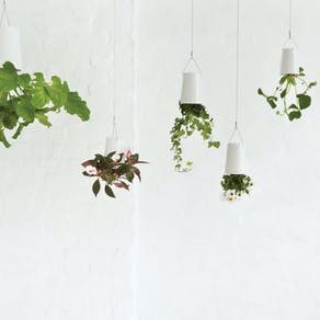 Hanging 'Upside Down' Planter