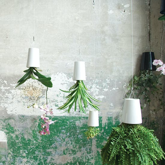 Hanging 'Upside Down' Planters