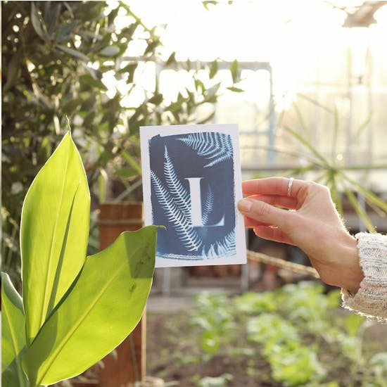 Letter Cyanotype Greetings Card
