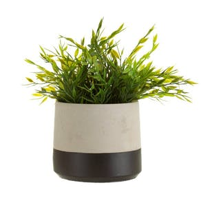 Luxury Black Dip Cement Planter