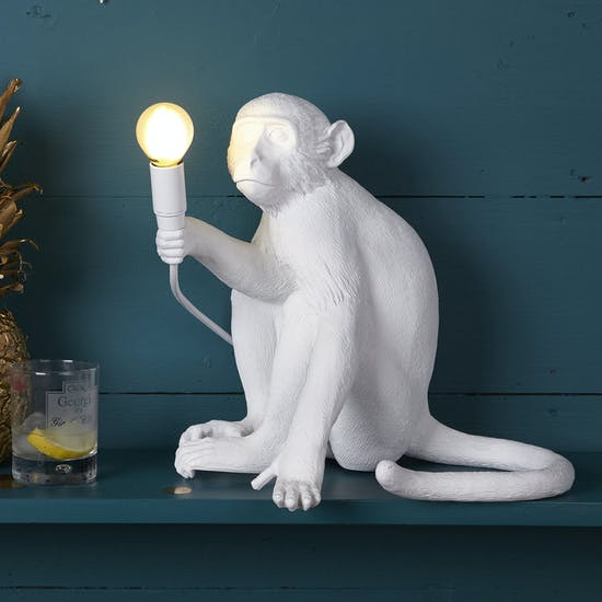 Monkey Light