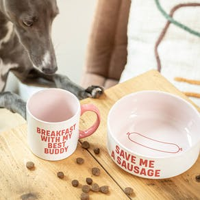 Matching Mug And Dog Bowl Gift Set