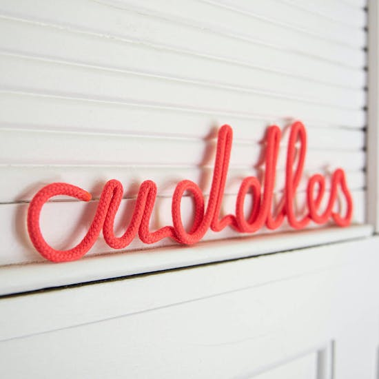 Neon Coral Soft Script Style Word