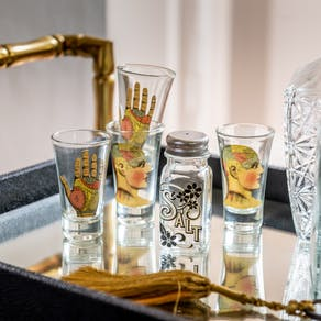 Phrenology Tequila Shot Glasses In Gift Box