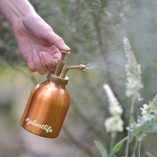 Personalised Copper Plant Mister
