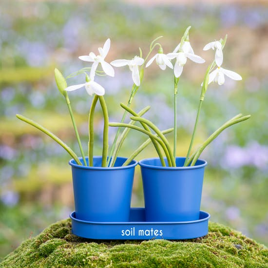 Personalised Metal Blue Double Planter