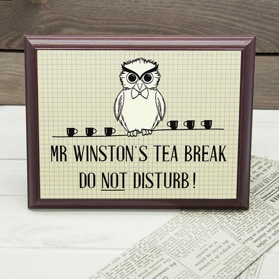 Personalised Owl Teachers Class Sign