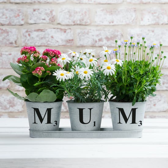 Personalised Set Of Three Zinc Buckets In A Tray