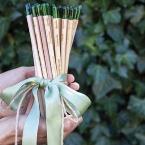 Set Of Five Mindful Sprout Pencils