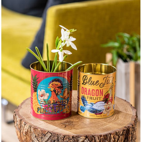 Set Of Gold Lined Bright Patterned Tins