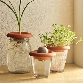 Set Of Three Terracotta Seed Sprouters