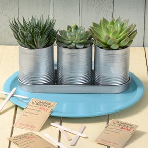 Personalised Planters With Seeds And Markers