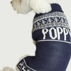 Personalised Knitted Dog Jumper