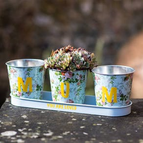 Mothers Day Personalised Trio Of Planters