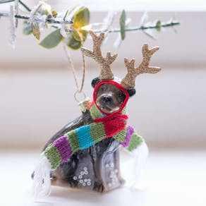 Cute Reindeer Dog Bauble
